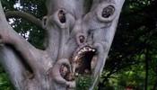 好狰狞的树