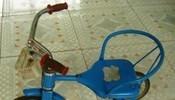 小时候骑过它的请举手~