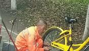 成都街边,一环卫大爷正在给共享单车上链条
