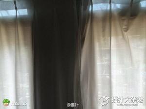 他感觉家里有人盯着他看 抬头望向窗帘差点吓尿