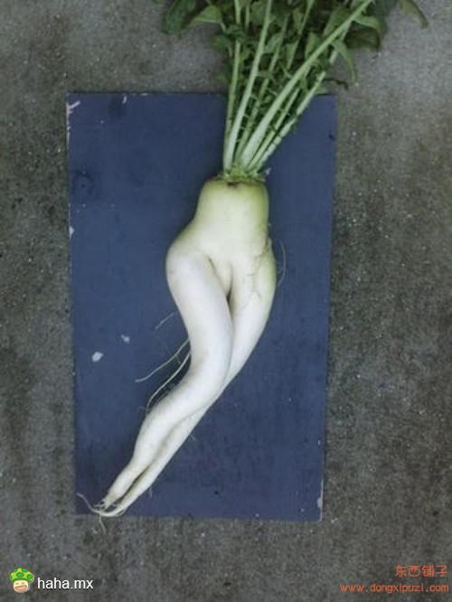 好内涵的蔬菜