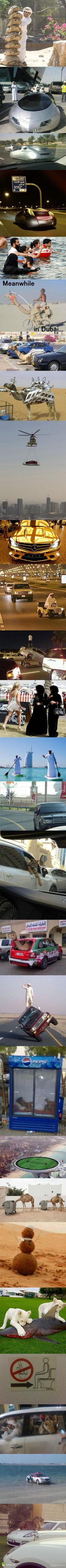 迪拜土豪的日常