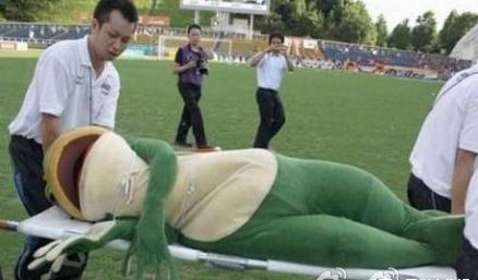 这只青蛙热得晕了过去