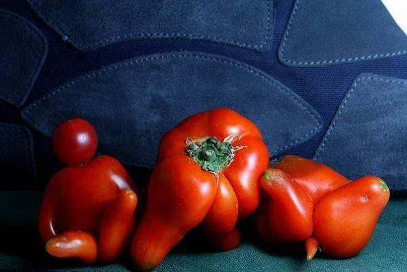 西红柿也成精了