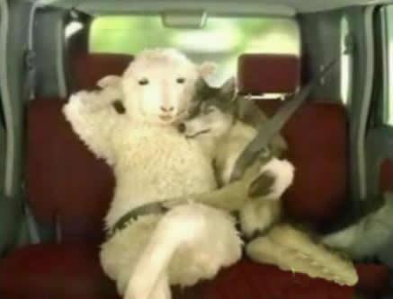 羊成了大款之后竟然居然也找了小秘!