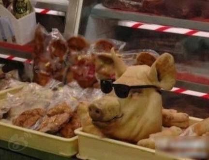 去超市看到了一个很帅的猪头