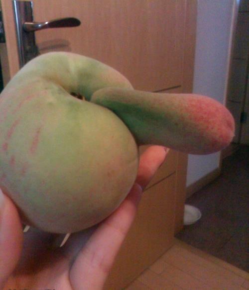 非常非常YD的桃子