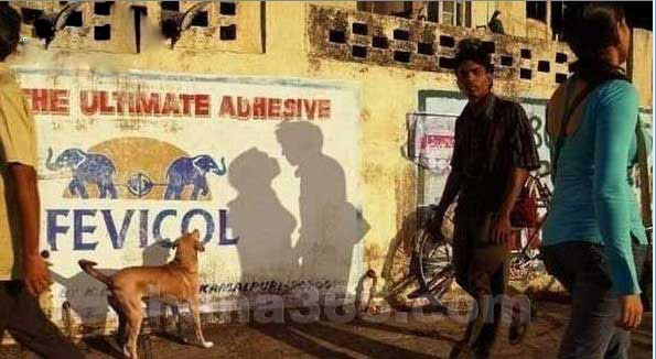 当狗狗发现巧合