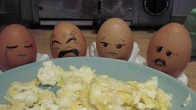 蛋蛋们一想到自己恐怖的未来就...