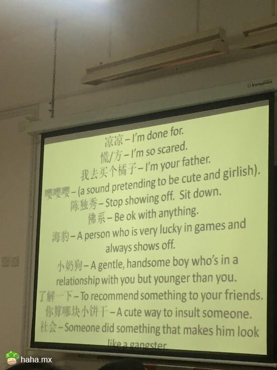 向外教介绍中国slang,xswl