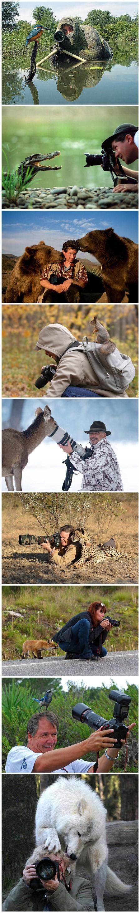 摄影师与动物们的亲密接触,太和谐了