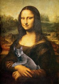 蒙娜丽莎的猫